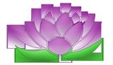 Massagen und Yoga blüte